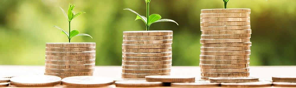 Finances and Grants
