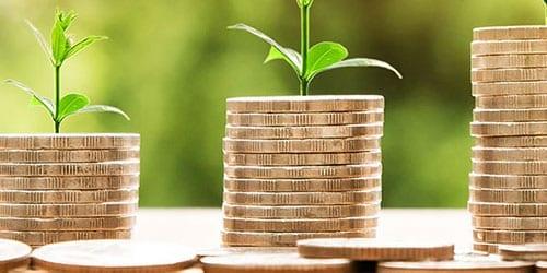 Finances and Grants in Hong Kong