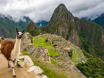 Peru Company Registration