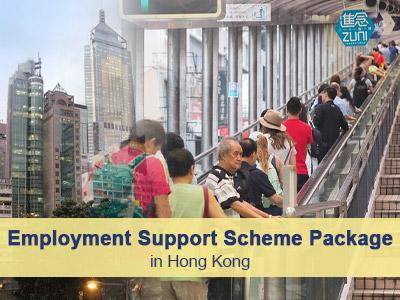 Employment Support Scheme Package